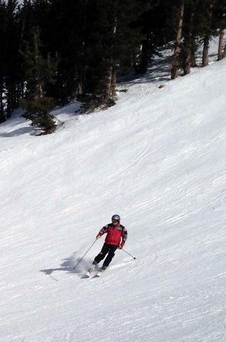 John Hays skiing